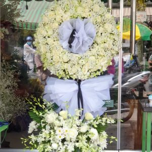 Hoa chi buồn Tân Phú Đông